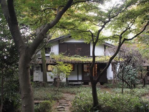 緑に囲まれた一軒家カフェ「オーブンミトンカフェ」でシフォンケーキセット