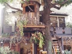 ツリーハウスがあるカフェ レ・グラン・ザルブル